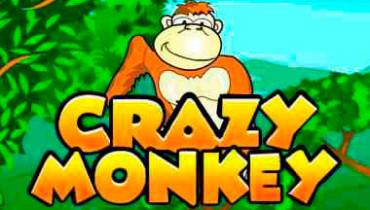 Обзор игрового автомата Crazy Monkey