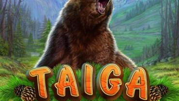 Обзор игрового автомата Taiga