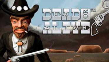Обзор игрового автомата Dead or Alive